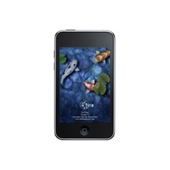 二手iPod Touch 2代MP3/MP4回收
