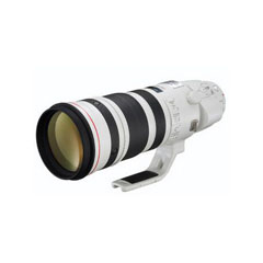 二手 镜头 佳能EF 200-400mm f/4L IS USM EXTENDER 1.4X 回收